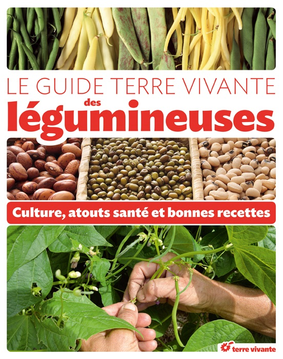 guide legumineuses terre vivante
