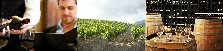 vin collage 2 vaucluse