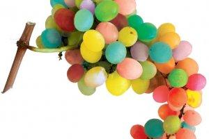 raisin-multicolore