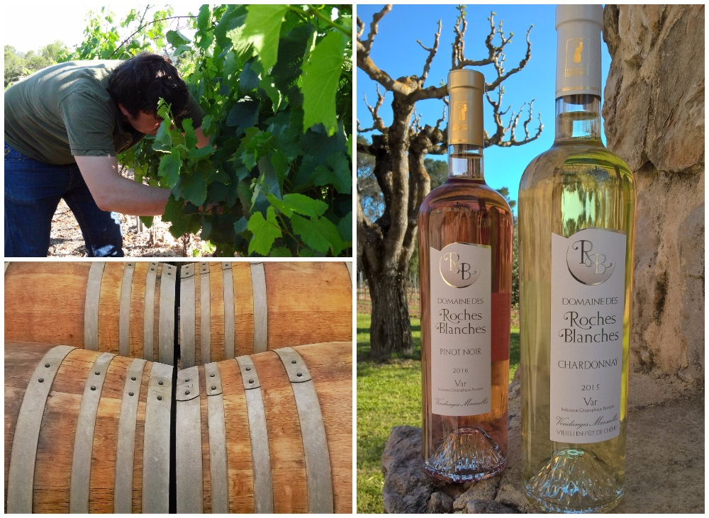 domaine des Roches Blanches