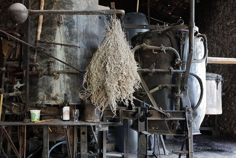 alambic Distilleries et Domaines de Provence
