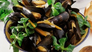moules potagères