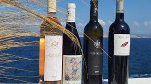vins d'été